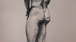 Male Nude Study - Charcoal pencil and white pastel pencil on paper, 19